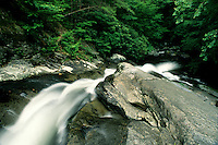 The Middle Prong of the Little River flows fevently in Spring, Great Smoky Mountains National Park, Tennessee