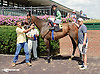 Harling's Darling winning at Delaware Park on 8/13/14
