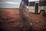 ITUMBIARA, BRAZIL - OCTOBER 16:<br /> A field worker walks on sugarcane land that was recently harvested, near the city of Itumbiara, in Goias state, Brazil, on Wednesday, Oct. 16, 2013. Pieces of sugarcane stalks are left on the ground to protect from erosion and to provide nutrients for the soil. Since the US recently passed a number of regulations and standards for cars and dropped tariffs that were in place for decades against Brazilian sugar, Brazilian ethanol is now flowing to the U.S., and the ethanol industry in the country is consolidating and ramping up for a new era.