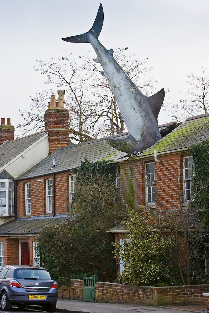 Shark In Roof Oxfordshire Uk Tim Graham World Travel