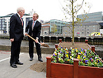 An Taoiseach Enda Kenny plants a tree at the Famine Commemoration in Drogheda. Photo: Colin Bell/pressphotos.ie