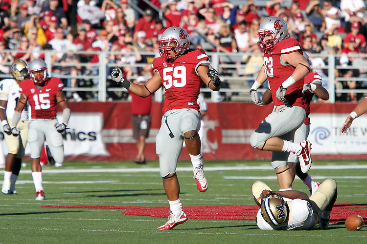 Sekope Kaufusi (#59), Washington State linebacker, celebrates a quarterback sack with teammates Kevin Kooyman (#93) and LeAndre Daniels (#15) looking on during the Cougars 23-22 comeback victory over Montana State at Martin Stadium on the WSU campus on September 11, 2010.