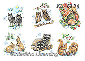 Interlitho-Theresa, CHRISTMAS ANIMALS, WEIHNACHTEN TIERE, NAVIDAD ANIMALES, paintings+++++,wood animals,KL6134,#xa# ,sticker,stickers,wulfs,rabbits,squirrels,owls,raccoons