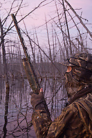 A waterfowl hunter among dead standing timber while hunting at dawn.