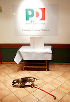 Un cane attende la sua padrona in un seggio elettorale allestito presso il circolo del Partito Socialista Italiano di via dei Giubbonari, in occasione delle elezioni primarie del centrosinistra a Roma, 25 novembre 2012..A dog waits for his owner in a polling station set at a Italian Democratic Party (PD) local branch in occasion of the center.left coalition primary election, in Rome, 25 November 2012..UPDATE IMAGES PRESS/Riccardo De Luca