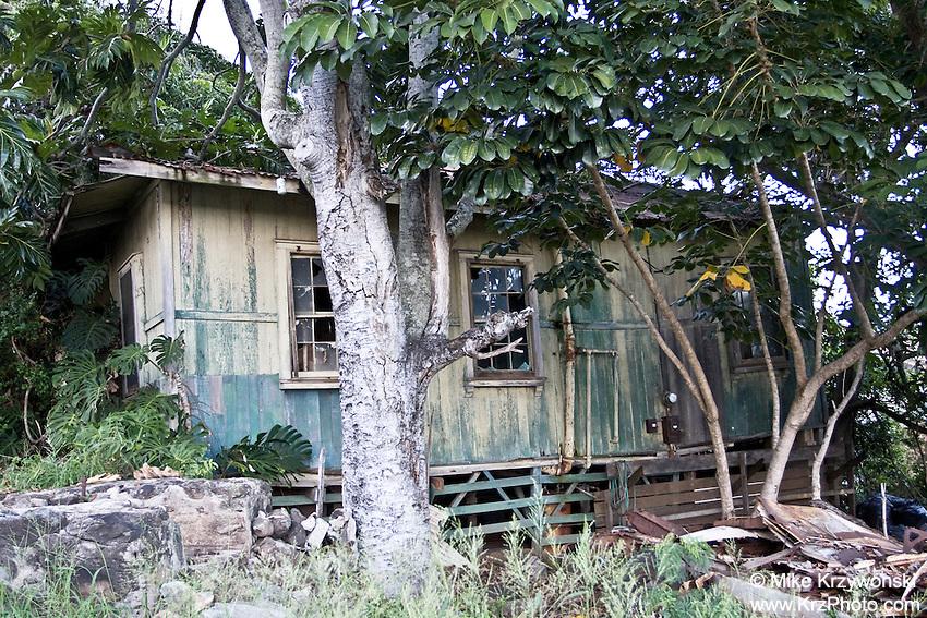 Old Abandoned House, Maui, Hawaii