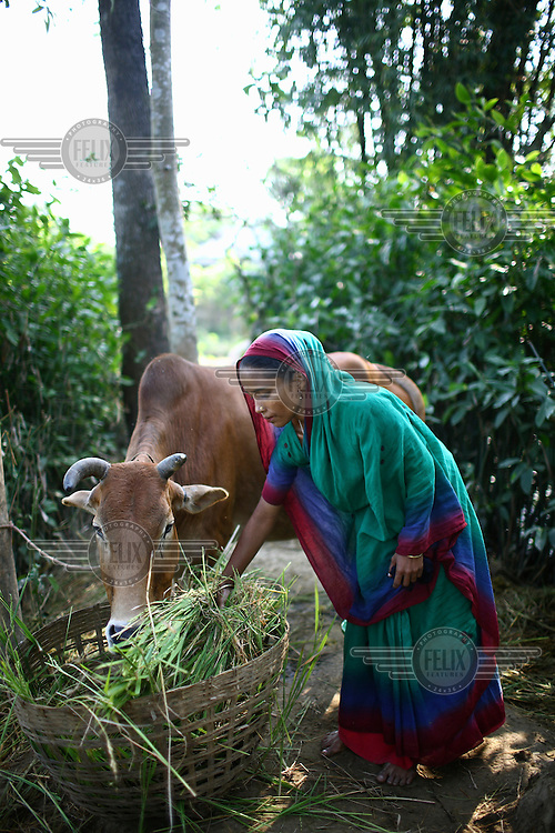 A woman in Birani Bazaar with the cow she was able to buy with the help of a microfinance loan from IFAD (International Fund for Agricultural Development).
