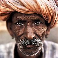 The Raika are an ancestral caste of camel breeders in Rajasthan. Due to the increased cost of feeding and shelter, more and more Raika are being forced to sell off their camels, often for camel meat, which was once considered taboo.