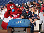 Archie enters Greater Nevada Field in Reno, Nev., on Tuesday, July 26, 2016.  <br />Photo by Cathleen Allison