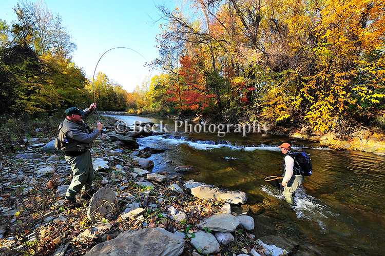 FLY FISHING IN FALL IN ERIE FOR STEELHEAD