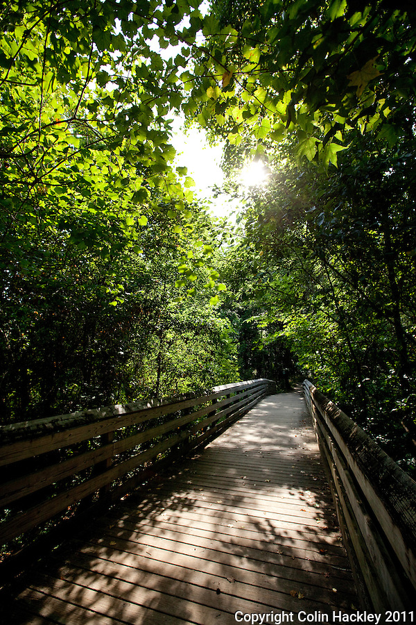 TOM BROWN PARK: A footbridge joins the Tom Brown and Lafayette Heritage Trail systems..COLIN HACKLEY PHOTO