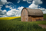 Barn in the Palouse Valley with yellow rape seed in bloom