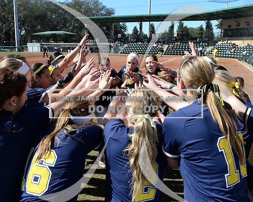 Michigan Wolverines Softball team cheer before a game against the Bethune-Cookman on February 9, 2014 at the USF Softball Stadium in Tampa, Florida.  Michigan defeated Bethune-Cookman 12-1.  (Copyright Mike Janes Photography)