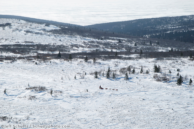 Paul Gebhart runs on top of the Blueberry Hills on his way to Shaktoolik on Monday afternoon.  Iditarod 2009