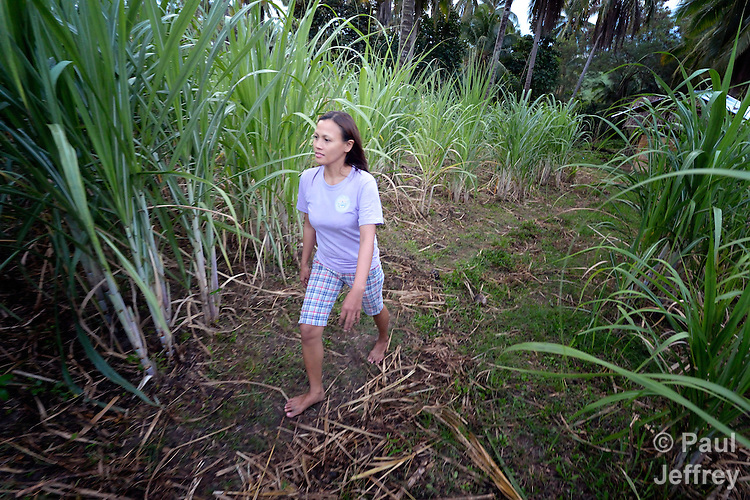 Eva Gantuangco is a survivor of human trafficking in Japan, where she worked as an entertainer. Here, outside Digos on the southern island of Mindanao in the Philippines, she walks on a four hectare farm she bought with her earnings. Gantuangco, who testified against her traffickers, has been assisted by the Batis Center for Women.