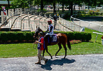 The normally packed paddock is empty save for jockeys and essential workers at Belmont race track in Elmont, New York, USA, 20 June 2020. The Belmont is being run without fans due to coronavirus SARS-CoV-2 which causes the Covid-19 disease and while it has always been the third leg of the Triple Crown, due to Covid-19 it is, instead the first leg in 2020.