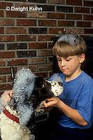 BH22-051z  Bubbles - boy washing dog
