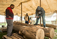 NWA Democrat-Gazette/BEN GOFF @NWABENGOFF<br /> Namon Beasa (left) and Juda Kaios shape a log Saturday, April 14, 2018, during a ceremony to launch a project to build a Marshallese KorKor, a type of outrigger canoe, at the Shiloh Museum of Ozark History in Springdale. Over the coming weeks master builder Liton Beasa, born and raised on Namdrik Atoll in the Marshall Islands and living in Springdale since 2013, and his family will build a roughly 20 foot long KorKor at the museum with opportunities for school groups and the public to observe. On the Marshall Islands canoes are built from breadfruit trees, but this canoe will be built from a locally-sourced sycamore tree. The builders plan to feature the finished canoe during Jemenei Day (Marshallese constitution day) celebrations in Springdale between May 25-28. The project is supported by the Arkansas Coalition of Marshallese of Springdale and the Shiloh Museum of Ozark History, with grants from the Arkansas Humanities Council and the National Endowment for the Humanities.