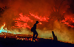 1996 Rogge Fire