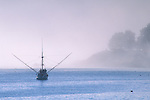 Commercial fishing boat in fog anchored in calm water near point land, Wm R. Hearst State Beach, San Simeon, California