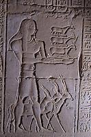 Afrique/Egypte/Env d'Assouan: Le temple de Kôm Ombo - Scène d'offrandes