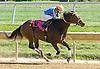 Inspeightofthegold winning at Delaware Park on 10/1/12