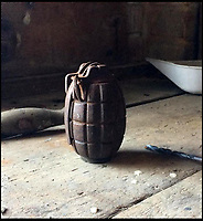 Families 'dummy' grenade turns out to be real.