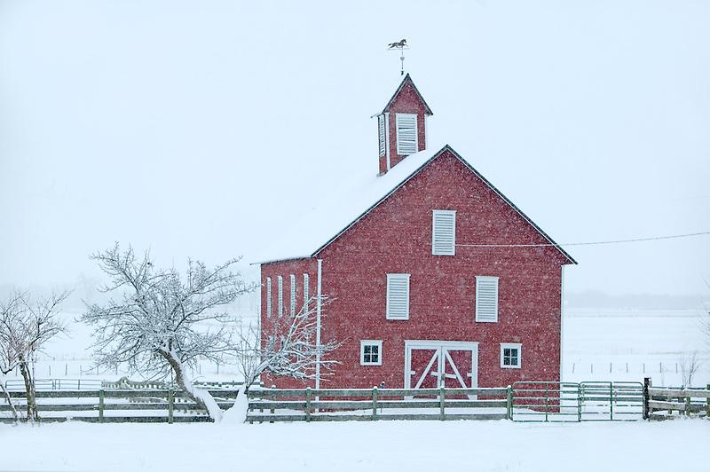 Barn in snowstorm. Near Joseph, Oregon