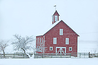 Barn in snowstorm. Near Joseph, Oregon