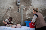 Some women prepare and cut intestines of a dead pig  in traditional way pig slaughtering.  Doneztebe (Basque Country). December 08. 2016. The slaughter traditionally takes place in the autum and early winter and the work often is done in the open. (Gari Garaialde / Bostok Photo)