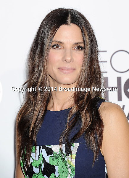 Pictured: Sandra Bullock<br /> Mandatory Credit &copy; Gilbert Flores /Broadimage<br /> 2014 People's Choice Awards <br /> <br /> 1/8/14, Los Angeles, California, United States of America<br /> Reference: 010814_GFLA_BDG_311<br /> <br /> Broadimage Newswire<br /> Los Angeles 1+  (310) 301-1027<br /> New York      1+  (646) 827-9134<br /> sales@broadimage.com<br /> http://www.broadimage.com