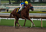ARCADIA, CA: #6 Charlatan and Drayden VakDyke win an allowance race at Santa Anita Park in Arcadia, California on March 14, 2020.