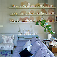 Open shelves in the living room display a collection of sea fans, coral and shells together with antique glass specimen jars