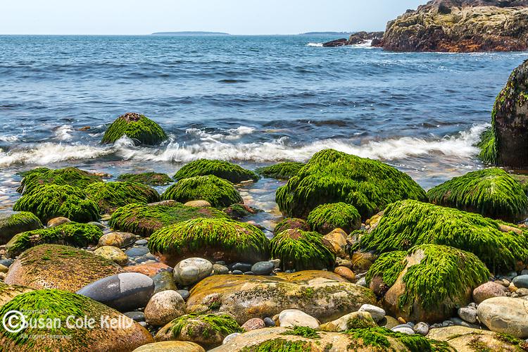 Hunters Beach in Acadia National Park, Maine, USA