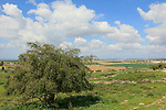 Israel, Shephelah, a view from Tel Zafit, identified as Biblical Gath, one of the ancient Canaanite and Philistine five cities