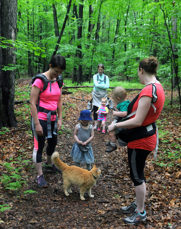 Hikers discuss the local Cat that has decided to accompany thems on a Hike It Baby/ Catskills-Woodstock sponsored hike into the Esopus Bend Nature Preserve in Saugerties, NY, on Memorial Day Monday, May 30, 2016. Photo by Jim Peppler. Copyright Jim Peppler 2016<br /> The hike was led by HIB.Catsjill-Woodstock, Ambassador, Ann Peters, accompanied by her husband, John Peters, their daughter, Violet; HIB chapter co-Ambassador, Ali Troxell, with her daughter, Lucia; and Robin Willens, and her son, Landon. They entered at the Sterley Avenue entrance and walked thru to the landing area on the Esopus.