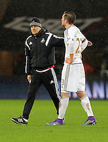 (L-R) Swansea head coach Francesco Guidolin thanks his player Gylfi Sigurdsson after the Barclays Premier League match between Swansea City and Crystal Palace at the Liberty Stadium, Swansea on February 06 2016