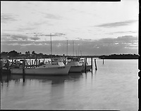 &quot;Capri Shrimp Boats&quot;<br />