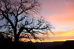 Grand Canyon National Park, South Rim sunset