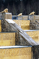 Golden frogs stand watch over a fountain with gilded steps