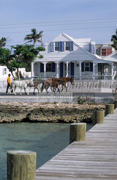 Les Bahamas /Ile d'Eleuthera/Harbour Island/Dunmore Town: Ponton , Chevaux et Maison coloniale du front de mer du village