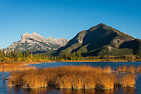 Mount Rundle and Sulphur Mountain form the backdrop of a calm evening on Vermillion Lakes, Banff National Park, Canada