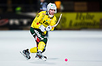 Stockholm 2013-12-03 Bandy Elitserien Hammarby IF - Ljusdals BK :  <br /> Ljusdal Oscar Jonsson <br /> (Foto: Kenta J&ouml;nsson) Nyckelord:  portr&auml;tt portrait