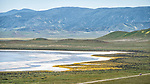 Soda Lake and clouds, spring, Carrizo Plain, San Luis Obispo County, Calif.