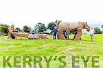 Richard Connolly, Liam Wharton, Marie O'Sullivan, Ben O'Sullivan and Liam Fleming with the Hay sculpture of the horses Doll and Bess pulling an unknown ploughman they have made for the South Kerry Ploughing Championships