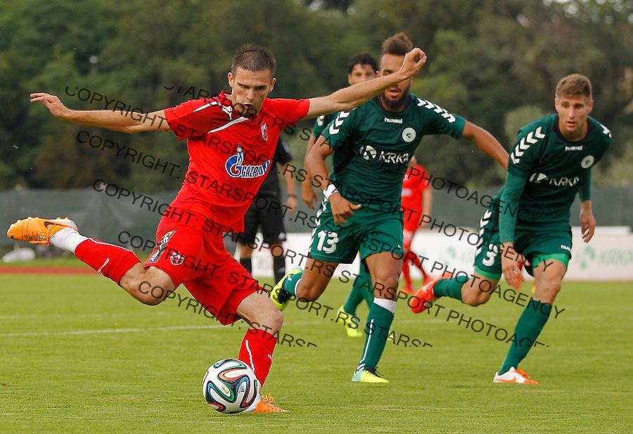 Fudbal season 2013-2014<br /> FK Crvena Zvezda pripreme<br /> Crvena Zvezda v Krka<br /> Marko Petkovic (L)<br /> Novo Mesto, 07.12.2014.<br /> foto: Srdjan Stevanovic/Starsportphoto &copy;