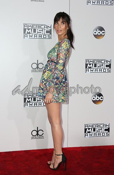 20 November 2016 - Los Angeles, California - Olivia Munn. 2016 American Music Awards held at Microsoft Theater. Photo Credit: PMA/AdMedia