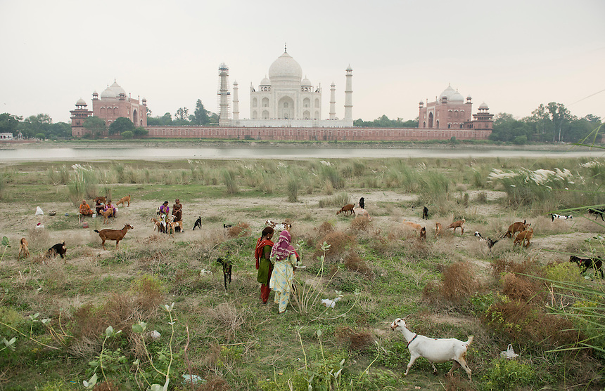 India Short Edit