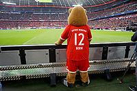 16.09.2017,  Football 1.Liga 2017/2018, 4. match day, FC Bayern Muenchen - 1.FSV Mainz 05, in Allianz-Arena Muenchen. Berni das Bayern-Maskottchen steht an der Bande. *** Local Caption *** © pixathlon<br /> <br /> +++ NED + SUI out !!! +++<br /> Contact: +49-40-22 63 02 60 , info@pixathlon.de