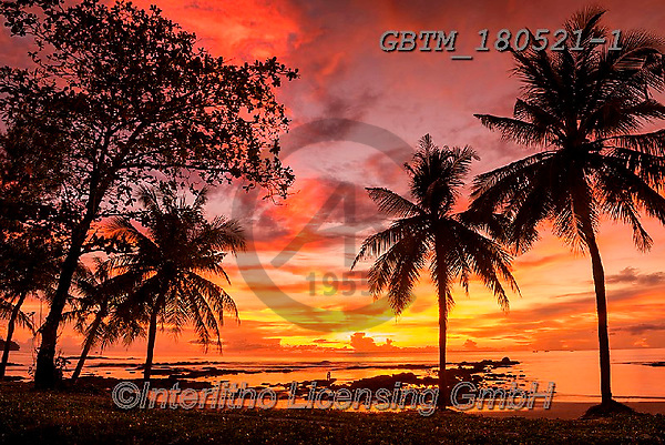Tom Mackie, LANDSCAPES, LANDSCHAFTEN, PAISAJES, photos,+Andaman Sea, Asia, Asian, Khao Lak, Thailand, Tom Mackie, Worldwide, coast, coastal, coastline, coastlines, color, colorful,+colour, colourful, couple, holiday destination, horizontal, horizontals, light, natural landscape, palm tree, palmtree, resto+ftheworldgallery, silhouette, sunrise, sunset, time of day, travel, tree, trees, tropical,Andaman Sea, Asia, Asian, Khao Lak,+Thailand, Tom Mackie, Worldwide, coast, coastal, coastline, coastlines, color, colorful, colour, colourful, couple, holiday+,GBTM180521-1,#l#, EVERYDAY